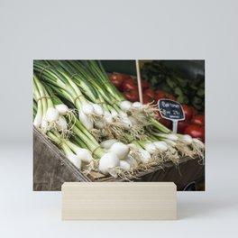 Spring onion Mini Art Print