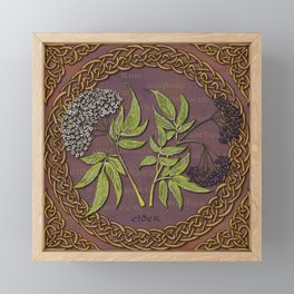 Celtic Elder Framed Mini Art Print
