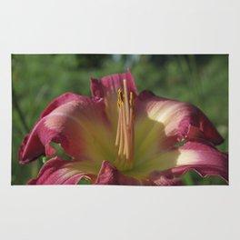 Sunrise in a flower - Hemerocallis White Eyes Pink Dragon Daylily Rug