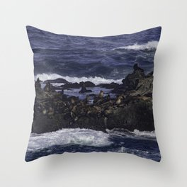 The world of Pacific Sea Lions Throw Pillow