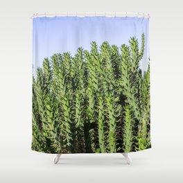Cactus Photography - Green Cactus Decor - Cacti Art Shower Curtain