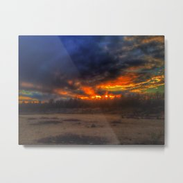 Nature's Biological Weapon Metal Print