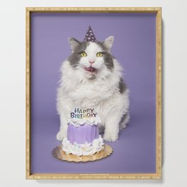 Happy Birthday Fat Cat In Party Hat With Cake Serving Tray