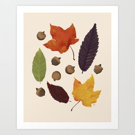 Autumn Treasure Hunting - Fall Leaves and Acorns Art Print