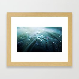 Water on Feather Framed Art Print