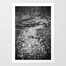 Little Creek (BW) Art Print