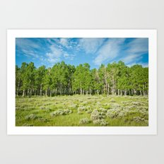 Summer skies Art Print