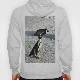 African Penguins Boulders Beach, Cape Town, South Africa Hoody
