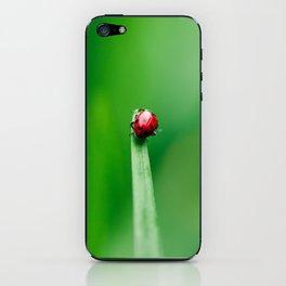 Balancing Acts iPhone Skin