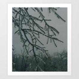 Trees encased in ice Art Print