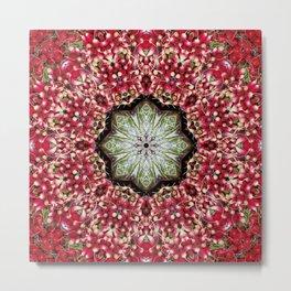 Really red radishes kaleidoscope! Metal Print