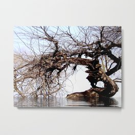 Inclined to....... Metal Print