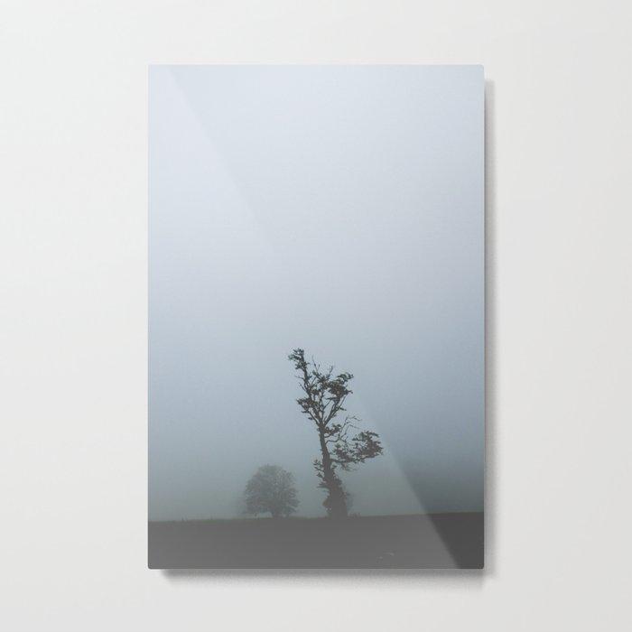 Black Forest Solitude Metal Print