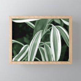 Tropic Series Framed Mini Art Print