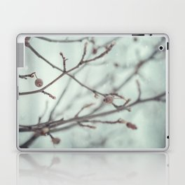 Wintermint. Laptop & iPad Skin