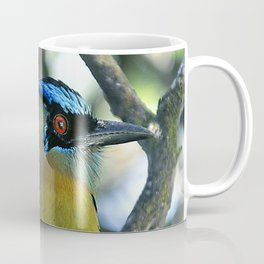 Costa Rican Treasure: The Mot Mot Bird Coffee Mug
