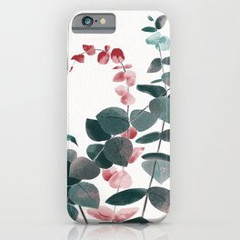 Eucalyptus Silver Dollar iPhone Case