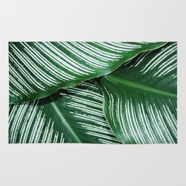 Green Tropical Leaves with White Stripes Closeup Rug