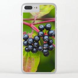 Nannyberries (Viburnum lentago) Clear iPhone Case