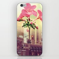 architect iPhone & iPod Skins featuring Floral Architect by Rachael Jane