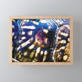 Sunburst Shell Framed Mini Art Print