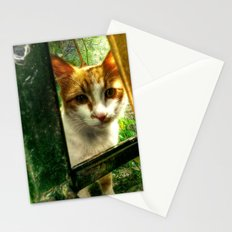 Daisy Cat Stationery Cards