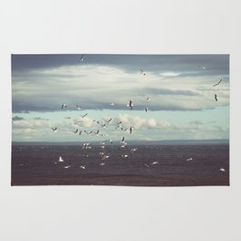 Seagulls flying Rug