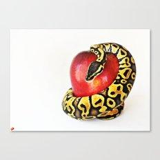 Python tempting Eve Canvas Print
