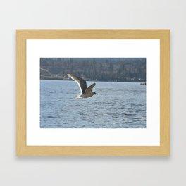 Cruising over the ocean Framed Art Print