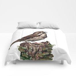 Song Sparrow Comforters