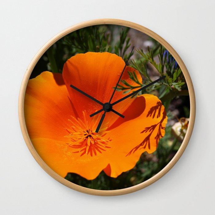 Brilliant California Poppy Wall Clock