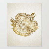 tree rings Canvas Prints featuring Tree Rings by Emmy Winstead
