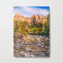 A River in Zion National Park Fine Art Print Metal Print