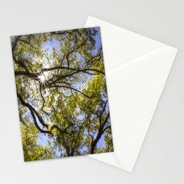 Oak Canopy Stationery Cards