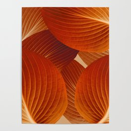 Leaves in Terracotta Color #decor #society6 #buyart Poster