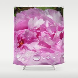 Pink Peony with Rain Drops Shower Curtain