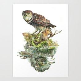 Sawtooth Biome Art Print