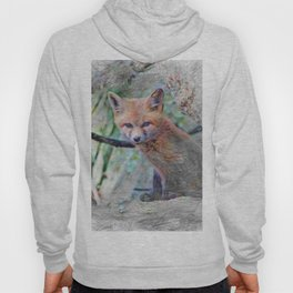 Artistic Animal Fox Baby Hoody