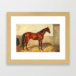 Vintage Stabled Horse Illustration (1905) Framed Art Print