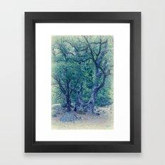 Oak Framed Art Print