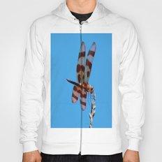 Amazing dragonfly Hoody