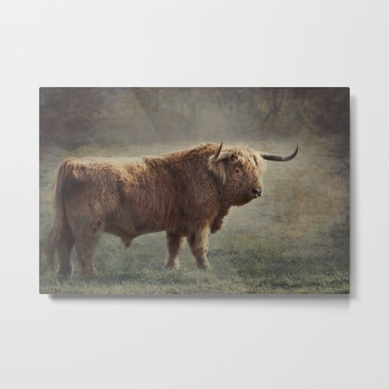 The Highland Bull Metal Print
