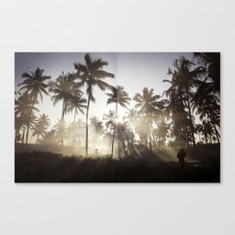 Palm Trees in The Sunlight Mist Photograph Canvas Print