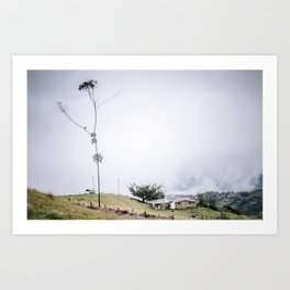 Colombian Farm #2 Art Print