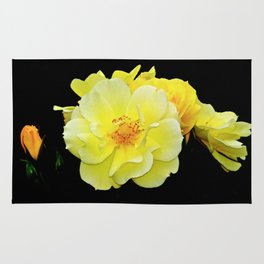 Yellow roses on black Rug