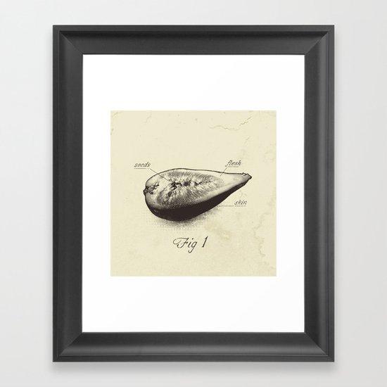Fig 1 Framed Art Print