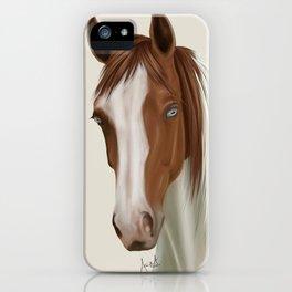 Chestnut Paint iPhone Case