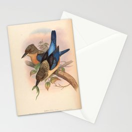 Dacelo Tyro Kingfisher Vintage Bird of Asia Stationery Cards