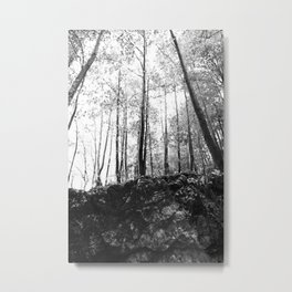 Forest black and white 7 Metal Print