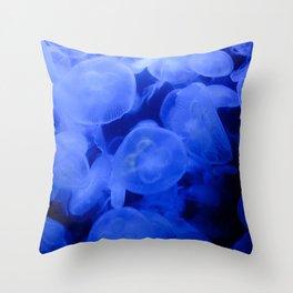 Baby Royal Blue Throw Pillow